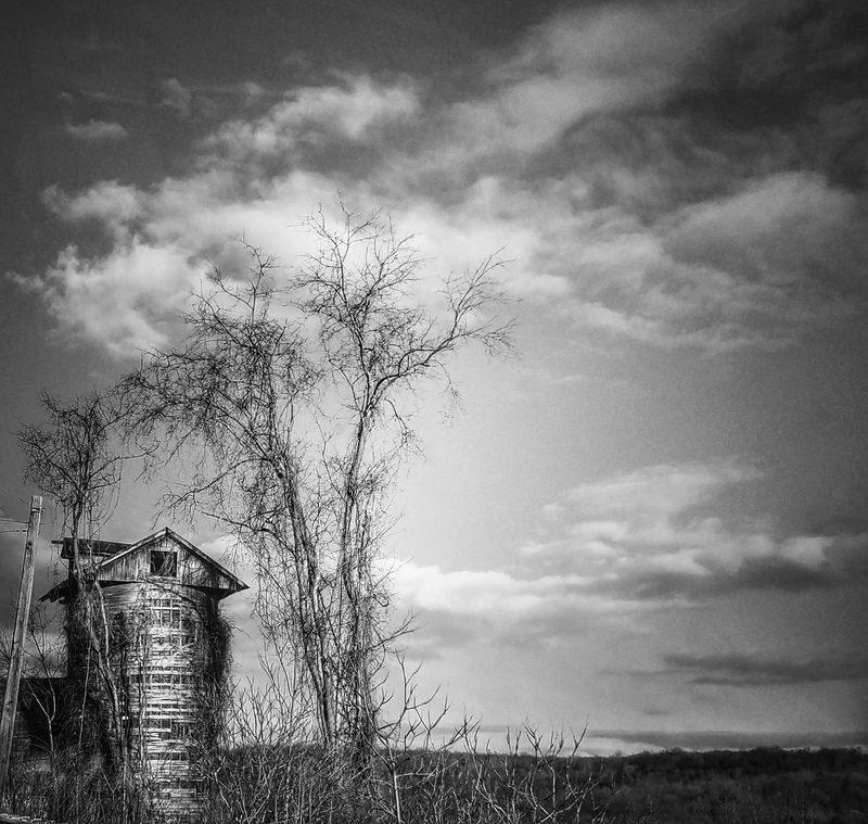 Sky Cloud - Sky No People Tree Outdoors Nature Low Angle View Dramatic Sky Day Storm Cloud Beauty In Nature Black And White Abandoned Structure