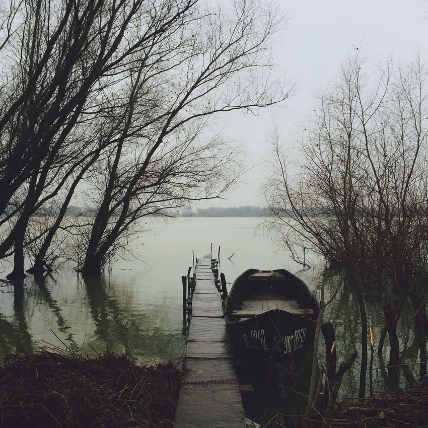 How's The Weather Today? Danube Vilkovo River Foggy Tree Wooden Boat Tree