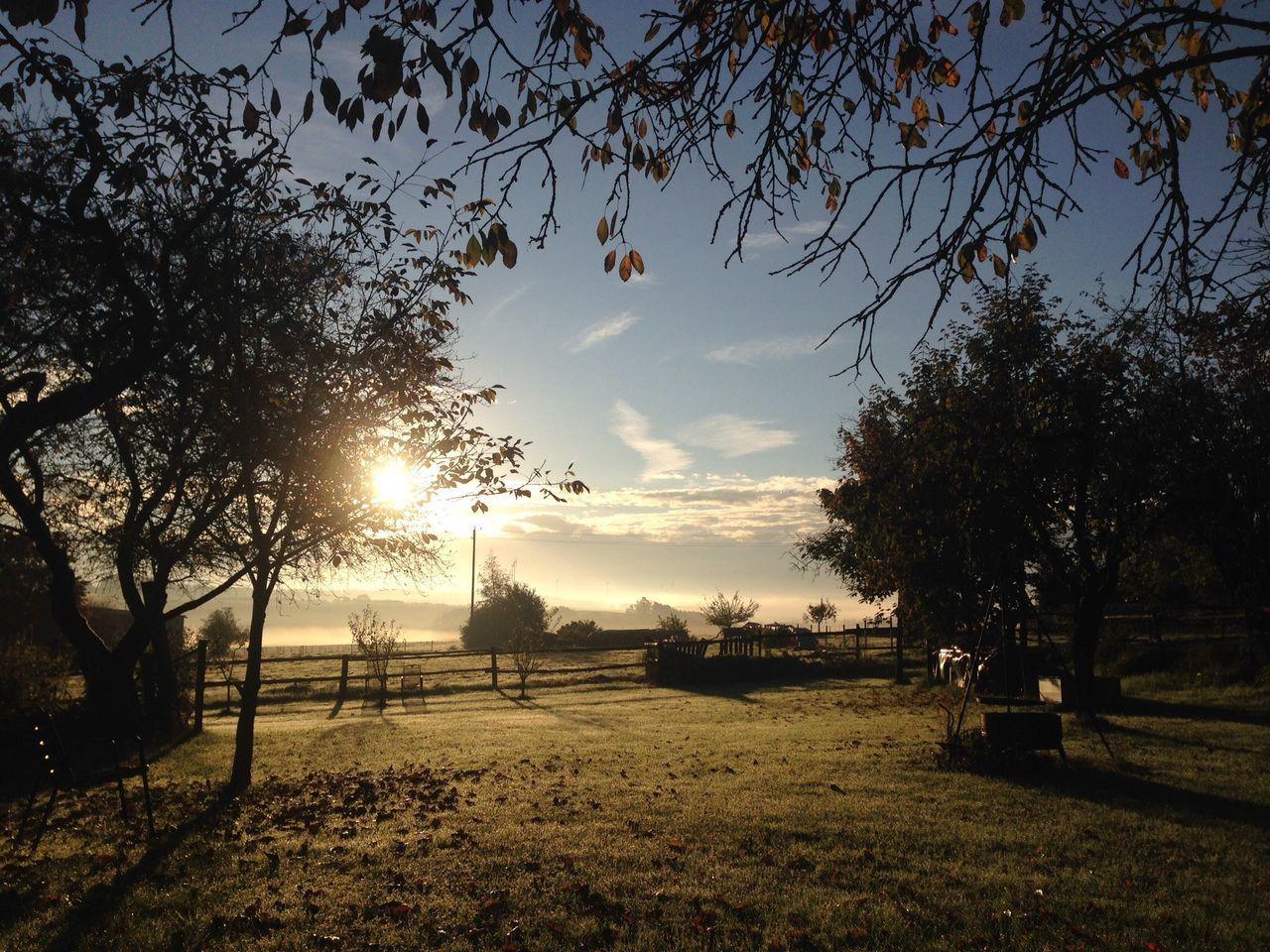 Autumn Colors Of Autumn Landscape Morning