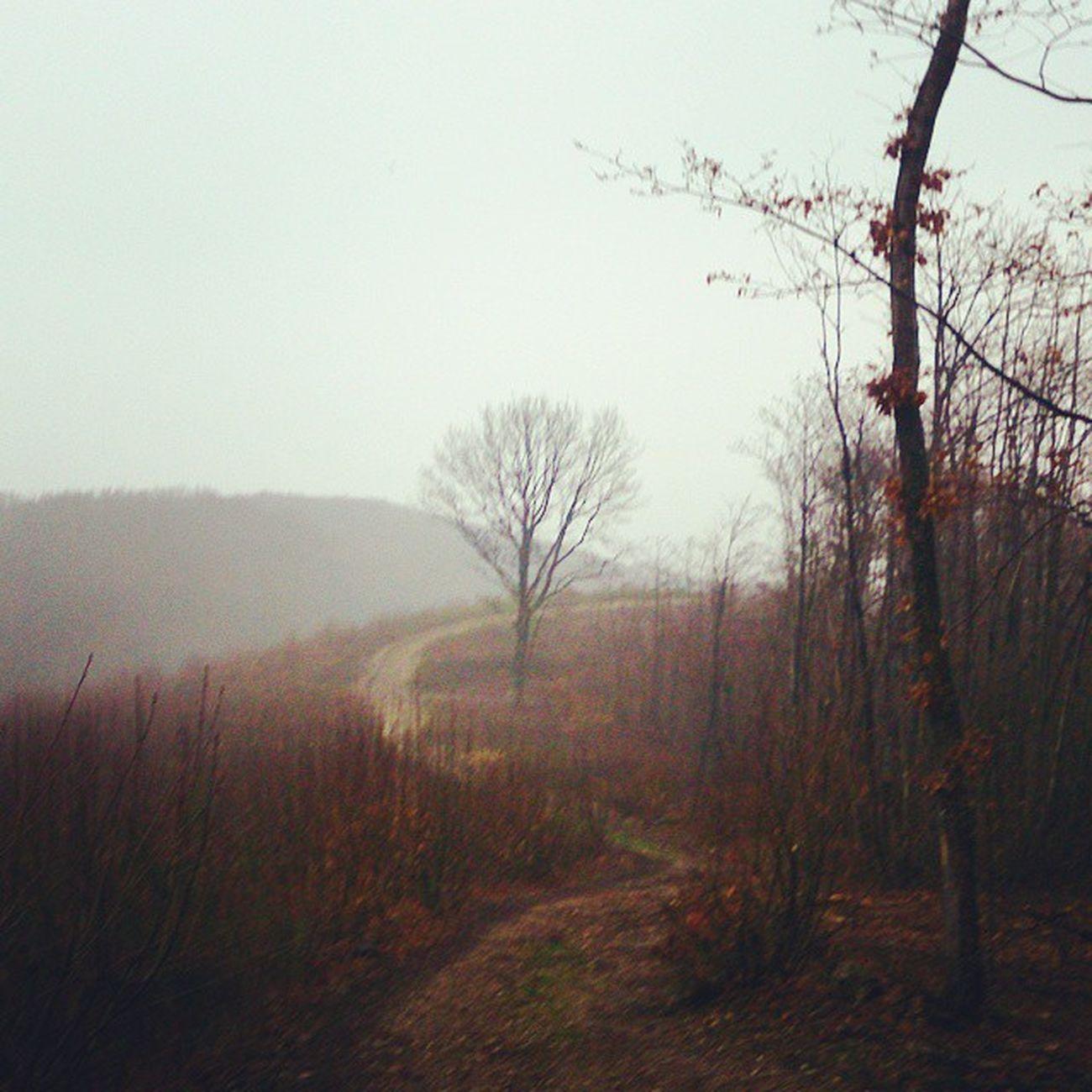 Stravacycling ou Stravarun , les mêmes Chemins s'empreintent de jour comme de nuit, sous la pluie ou au soleil, à la montée comme en descente Stravaphoto