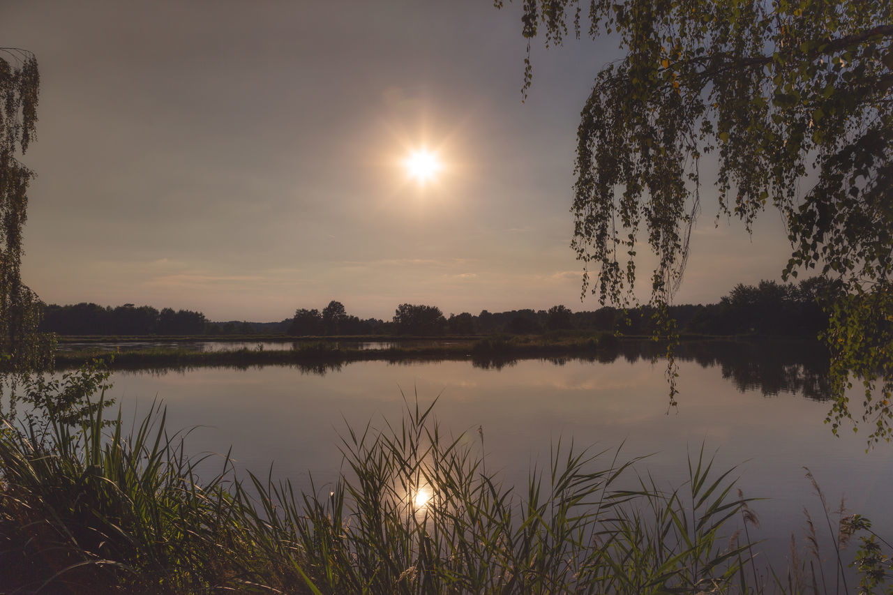 Sunset at the lake Murner See in Wackersdorf, Bavaria Bavaria Beauty In Nature Day Growth Lake Lake View Nature No People Outdoors Plant Reflection Scenics Silhouette Sky Sun Sunset Sunsets Tranquil Scene Tranquility Tree Water