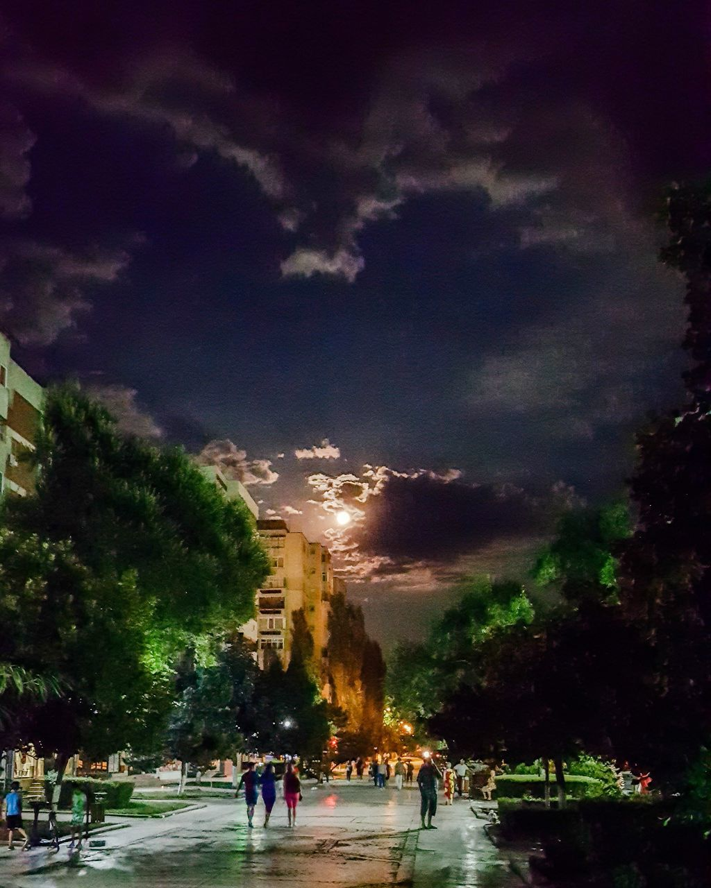 sky, cloud - sky, weather, large group of people, real people, men, built structure, nature, leisure activity, outdoors, lifestyles, tree, storm cloud, women, architecture, night, beauty in nature, people