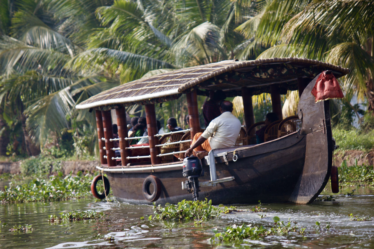 Boating Coconut Trees Lake Lake View Lakeshore Lakeside Lakeview Lifestyles Nature Palm Tree People Plant Scenery Scenics Tranquil Scene Tranquility Travel Travel Destinations Traveling Tree Tree Water Water Reflections Waterfront Motor Boat