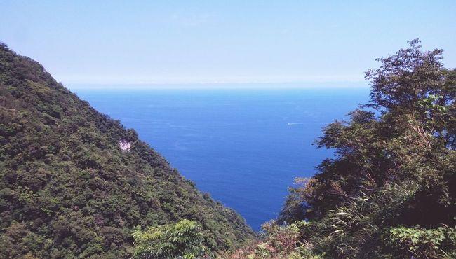 Horizon Over Water Blue Water Sea Tree Seascape Nature Outdoors Sky Ocean Tranquil Scene Scenics Beauty In Nature Yilan Yilan, Taiwan Taiwan
