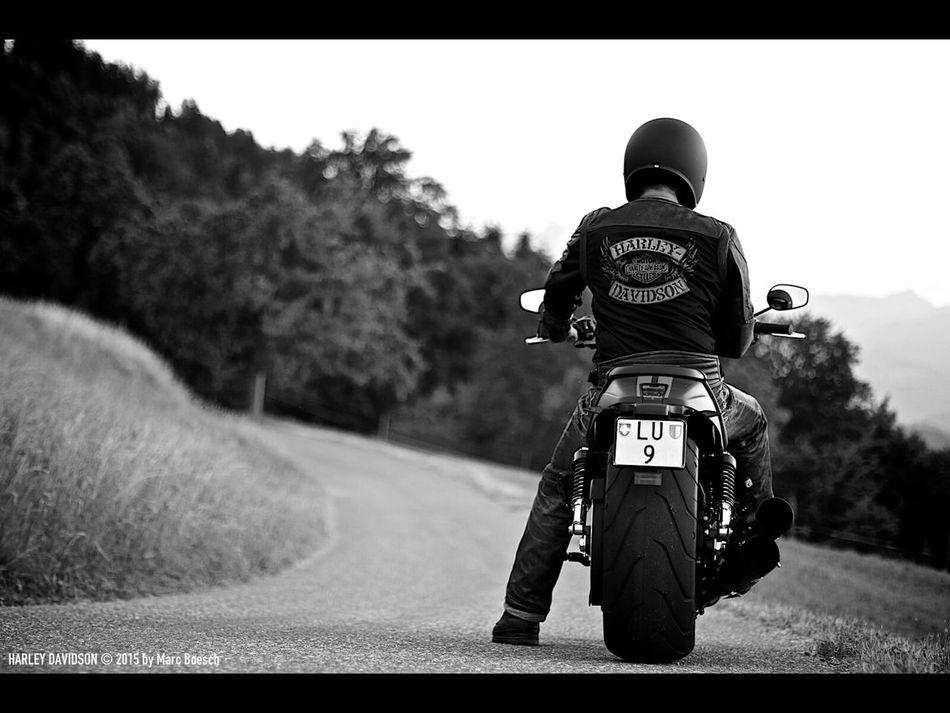 Harley Davidson Motorcycles Motorcycle Harleydavidson Harley Night Rod Special