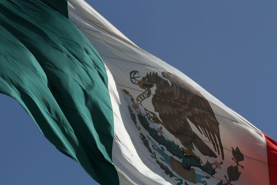 Beautiful stock photos of mexican flag, Animal Representation, Bird, Clear Sky, Close-Up