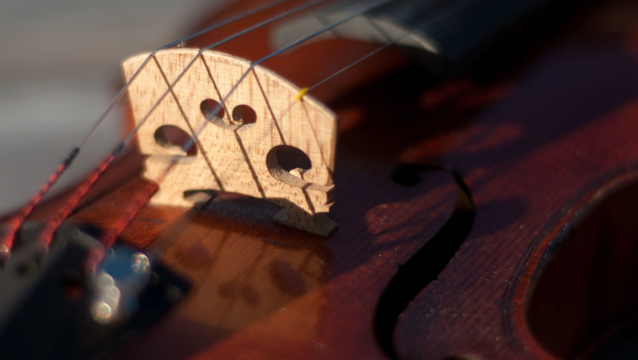 I started playing the violin in 6th grade as a part of a school orchestra program. I've had this particular instrument since 2002. The instrument is French made circa 1910-1920. I hope you enjoy these photos as much as I enjoy playing my beautiful violin! Aged Wood Arts Culture And Entertainment Bridge Bridges Close-up Cropped Durham NC F-hole Front Side Hobbies Music Natural Beauty Outdoors Part Of Reflection Sound Hole Sting Sunlight Violin