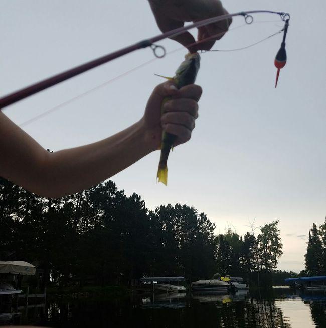 Crosslake, Minnesota Fishing Here Fishy Fishy Perch Rod And Reel Slimy Hook Line And Sinker