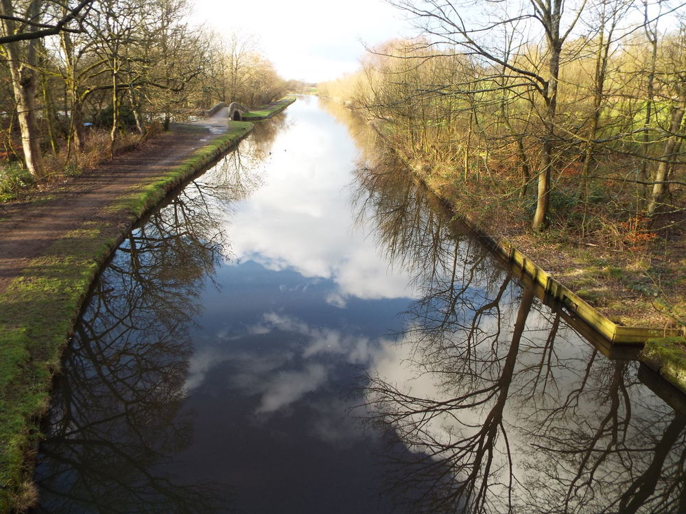 Haigh Hall Wigan United Kingdom Canal Water Reflection The Great Outdoors - 2016 EyeEm Awards