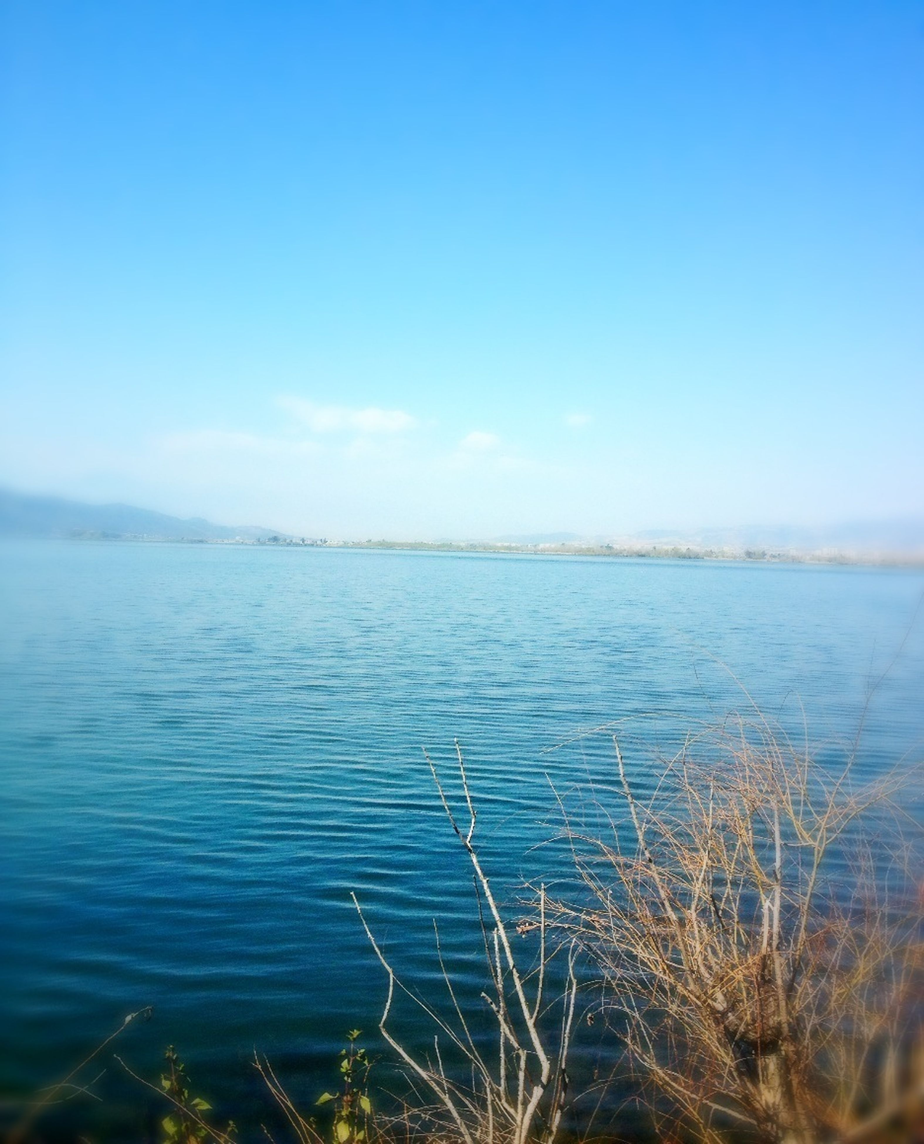 water, tranquil scene, blue, tranquility, scenics, clear sky, beauty in nature, nature, copy space, lake, sea, grass, idyllic, plant, sky, rippled, outdoors, no people, day, calm