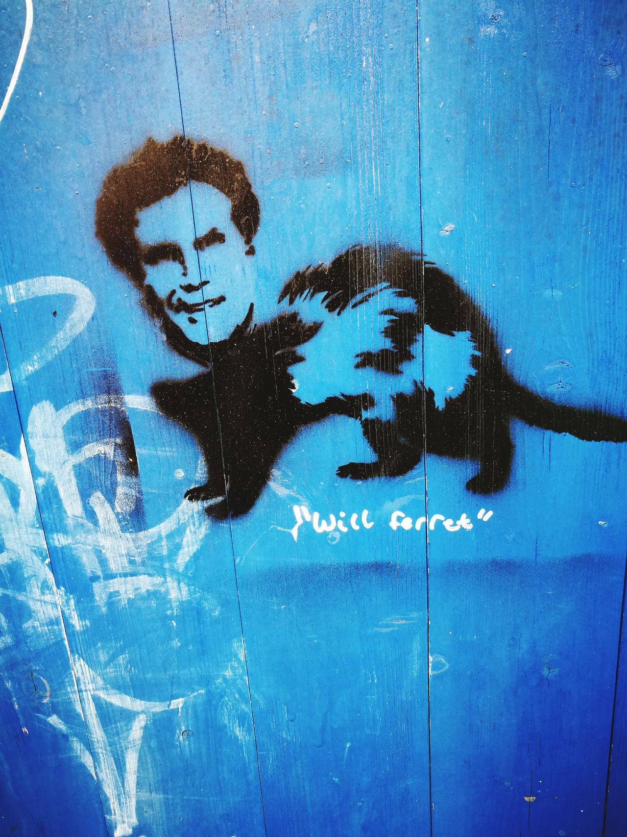 Will Ferret Outdoors Blue One Person Will Ferrell Graffiti Stencil Art Bristol Close-up People Day Sky