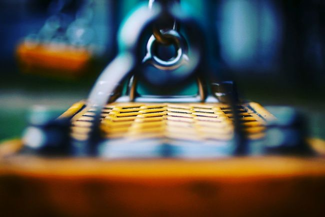 夜に入る前のこの子達🌿 Ideas Art No People Selective Focus EyeEmBestPics Hello World Myfavoritephoto Still Life Canon70d 2016 EyeEm Awards Enjoying Life MyFavorite  EyeEm Gallery Hi! Bokeh Photography ブランコ