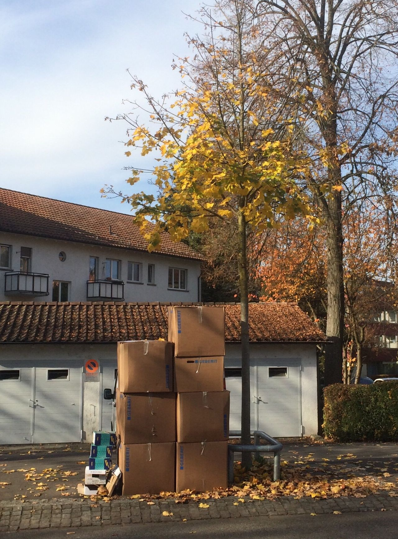 Tree Cardboard Boxes Autumn Building Exterior Outdoors No People Day