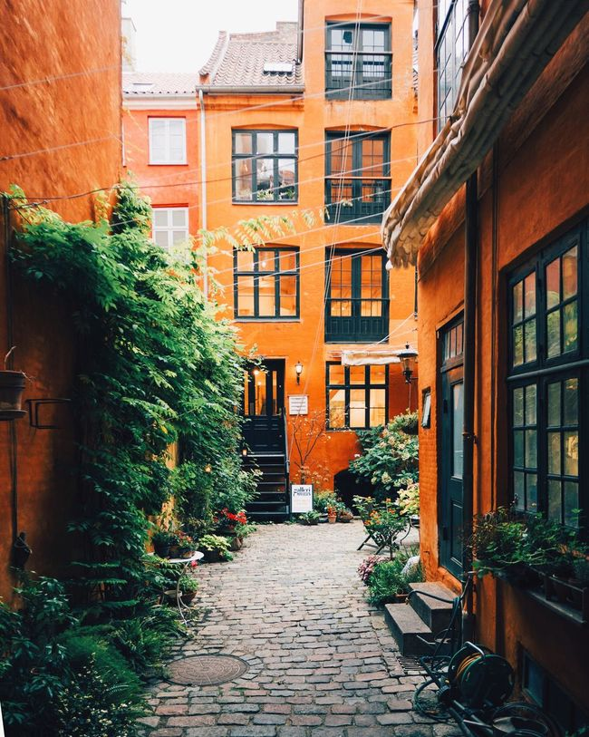 backyard. end of the series. #Copenhagen #DanishForLife #visitcopenhagen