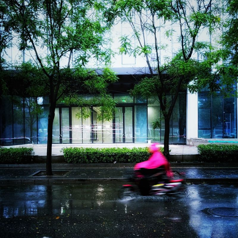 Tree Road Outdoors Raindrops On My Windshield Rainy Enjoying The View HuaweiP9 Wet Window Rain On The Move Street Mode Of Transport Transportation Rainning Day City Life Twisted World Pink Color Modern City Land Vehicle Red Riding In The Rain