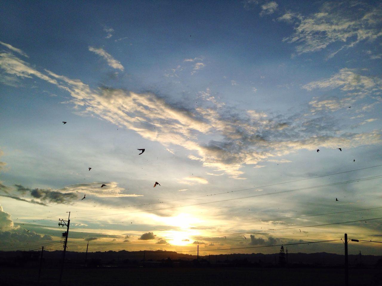 黑暗騎士出沒 Clouds And Sky Sunset Bat