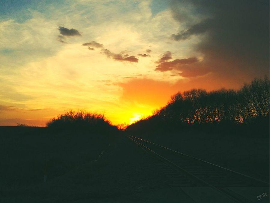 Sunset Nature Tree Beauty In Nature Silhouette Sky Cloud - Sky No People Scenics Outdoors Iowa Taking Photos Pretty♡ Train Tracks IowaFalls Iowa Life