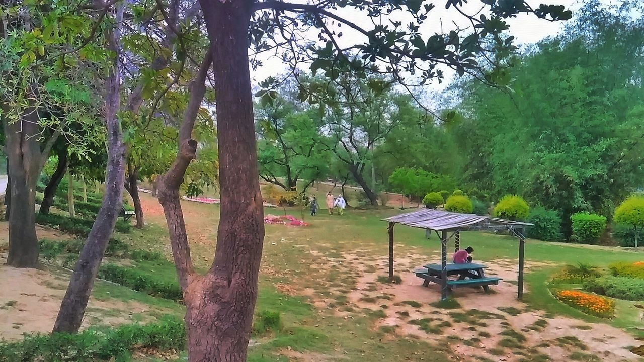 Tree Playground Nature Park - Man Made Space Green Color Outdoors Growth Day Grass People Beauty In Nature Real People Sky Pakistan Nature Clouds And Sky Nature Clouds Greenery Green Color EyeEmNewHere Scenics Landscape Clouds And Sky Cloud - Sky Tree Plant