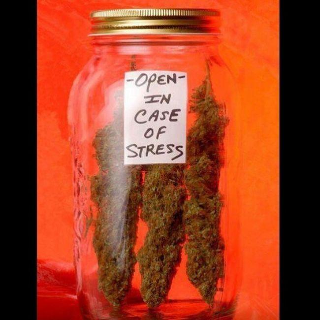 Realtalk Legalize It! Killaherb Positive Vibes