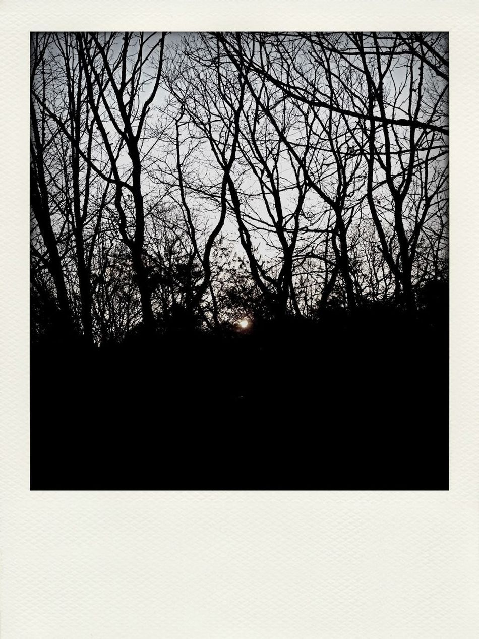 Sunrise Blackandwhite Poloroid Darkness Abounds