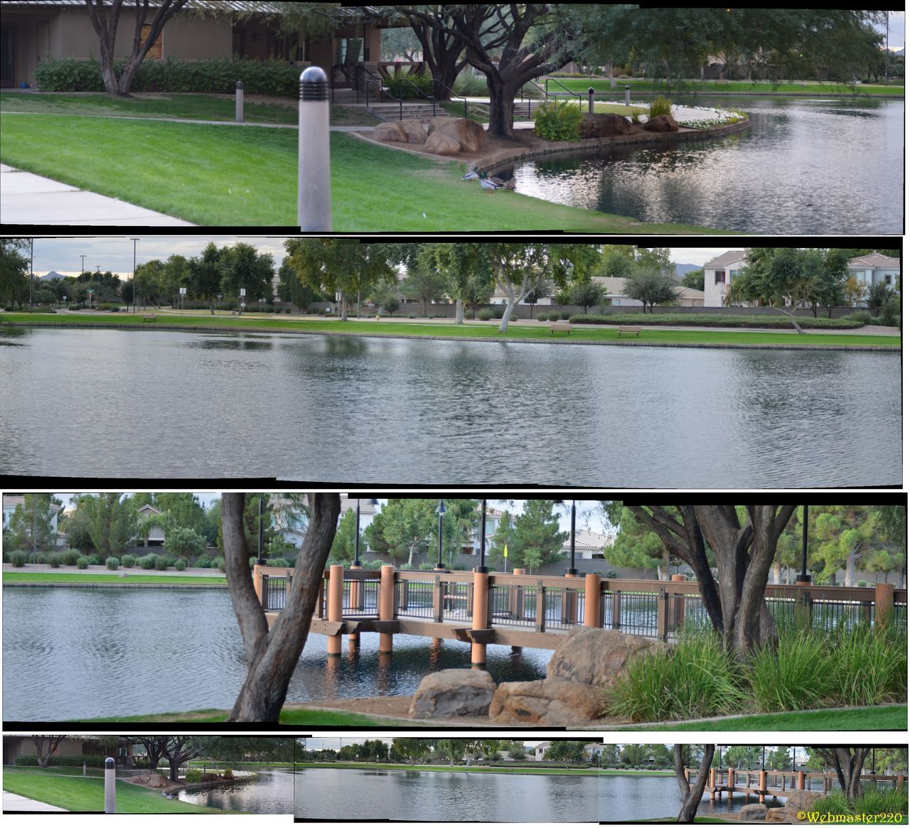 Power Ranch Lake Park including Clubhouse, Pier, Lake Catch And Release Distant Engineering Fishing Pier Lake Lake View Lakeshore Lakeside Outdoors Park Pier Fishing Pond Ponds Power Ranch Gilbert Az Power Ranch Lake Park Reflection Relaxing Moments Standing Water Tree View Of The Lake Water Waterfront