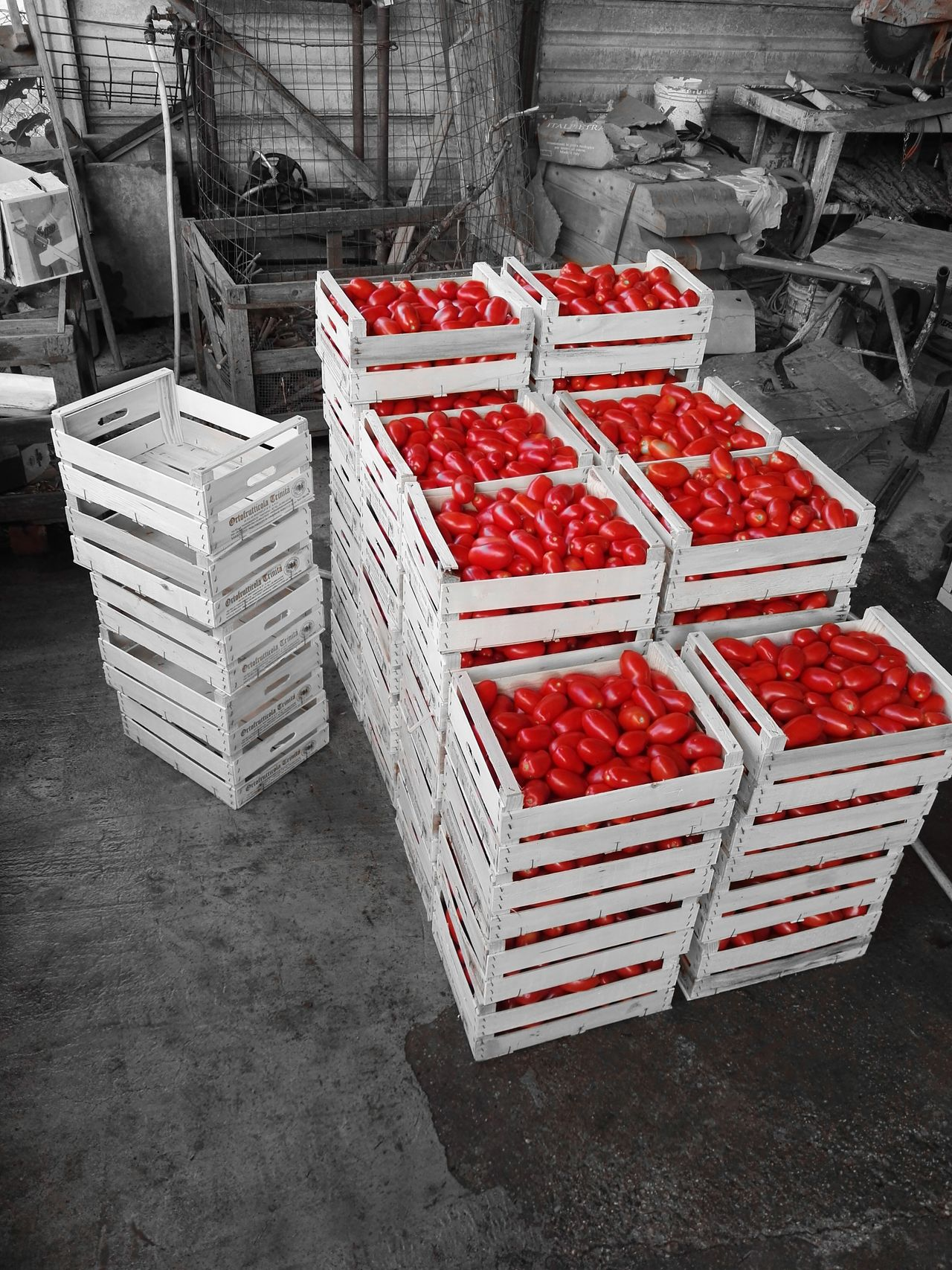Red Huawei P9 Leica Monochrome Picoftheday Foodporn Foodphotography Tradition Passata Passatadipomodoro Wood - Material Day Work Work In Progress Tomato Tomatoes🍅🍅 Cut And Paste Only One Colour Particular Italy Verona Italy Homamade Homemade Food