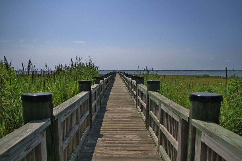 Assawoman Bay Bay Boardwalk Conservation Delmarva Diminishing Perspective Eric Barnes Photography Maryland Nature Ocean City Outdoors Perspective Pier Railing Wat Wetlands Wood How Do We Build The World? Landscapes With WhiteWall Here Belongs To Me The Great Outdoors With Adobe