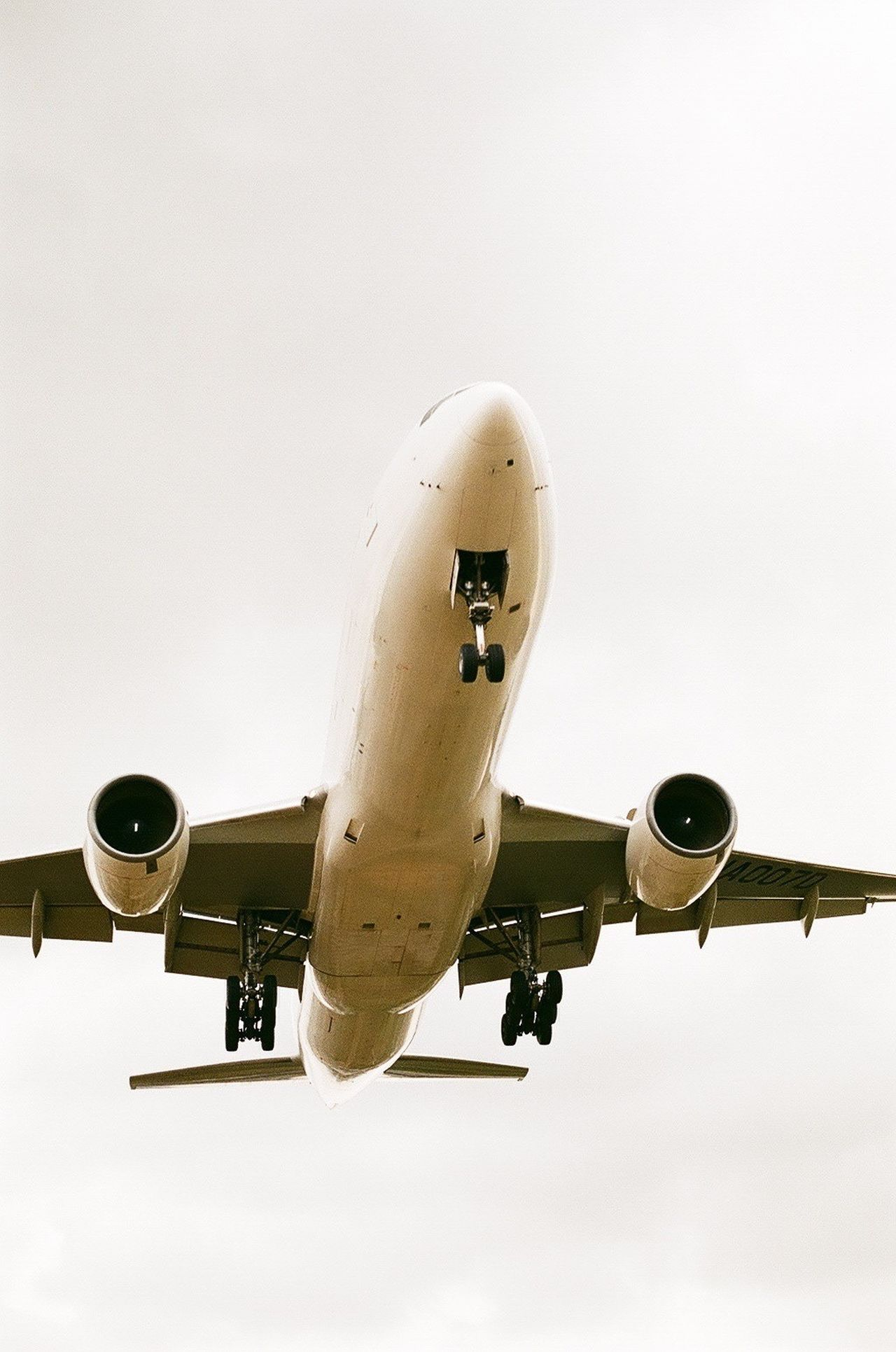 Beautiful stock photos of plane, Airplane, Clear Sky, Commercial Airplane, Copy Space