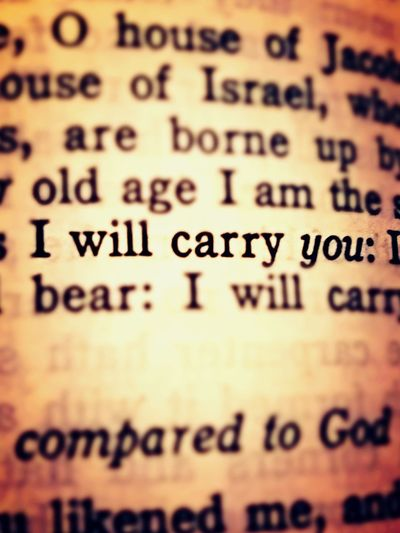 I Will Carry You Quote Bible Bible Quote Isaiah Book Of Isaiah Faith Religion Catholic