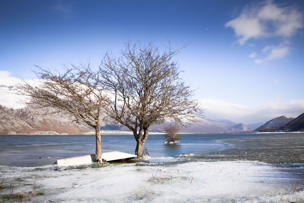 Frozen landscapes Bare Tree Beauty In Nature Blue Branch Cold Day Frozen Landscape Landscape Photography Landscapes Nature No People Outdoors Scenics Sea Sky Tree Water