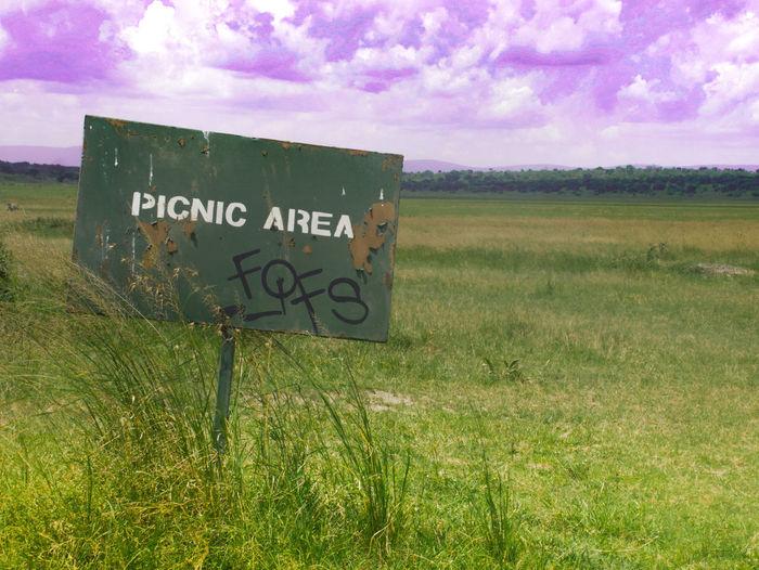 Blue Chill Field Green Green Color Landscape Picnic Safari Safari Park Sky