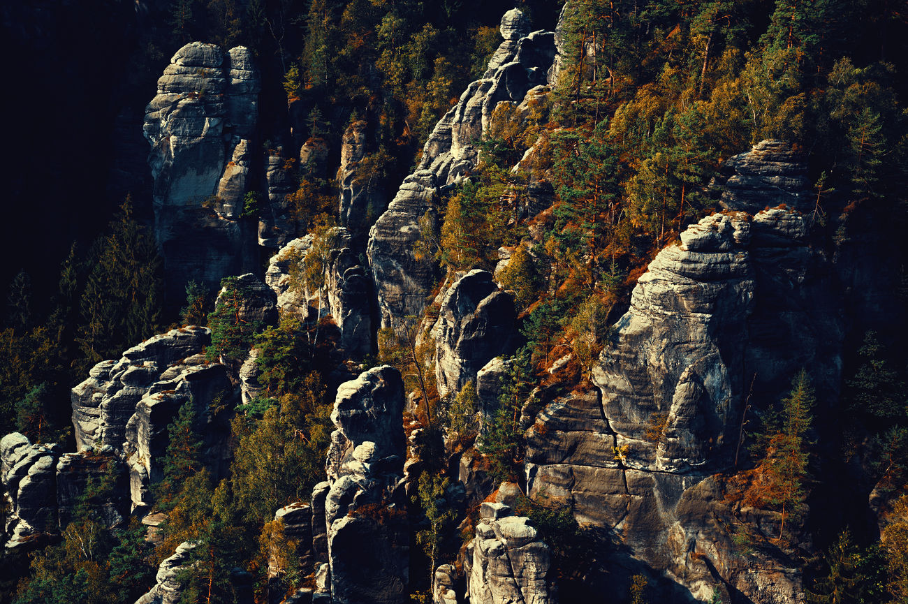 a rock formation in the saxon switzerland Bastei Beauty In Nature Beauty In Nature Day Elbsandsteingebirge Germany Landscape Nature No People Outdoors Rathen Rock Rock - Object Rock Formation Saxon Switzerland Saxony Shadows & Lights Trees