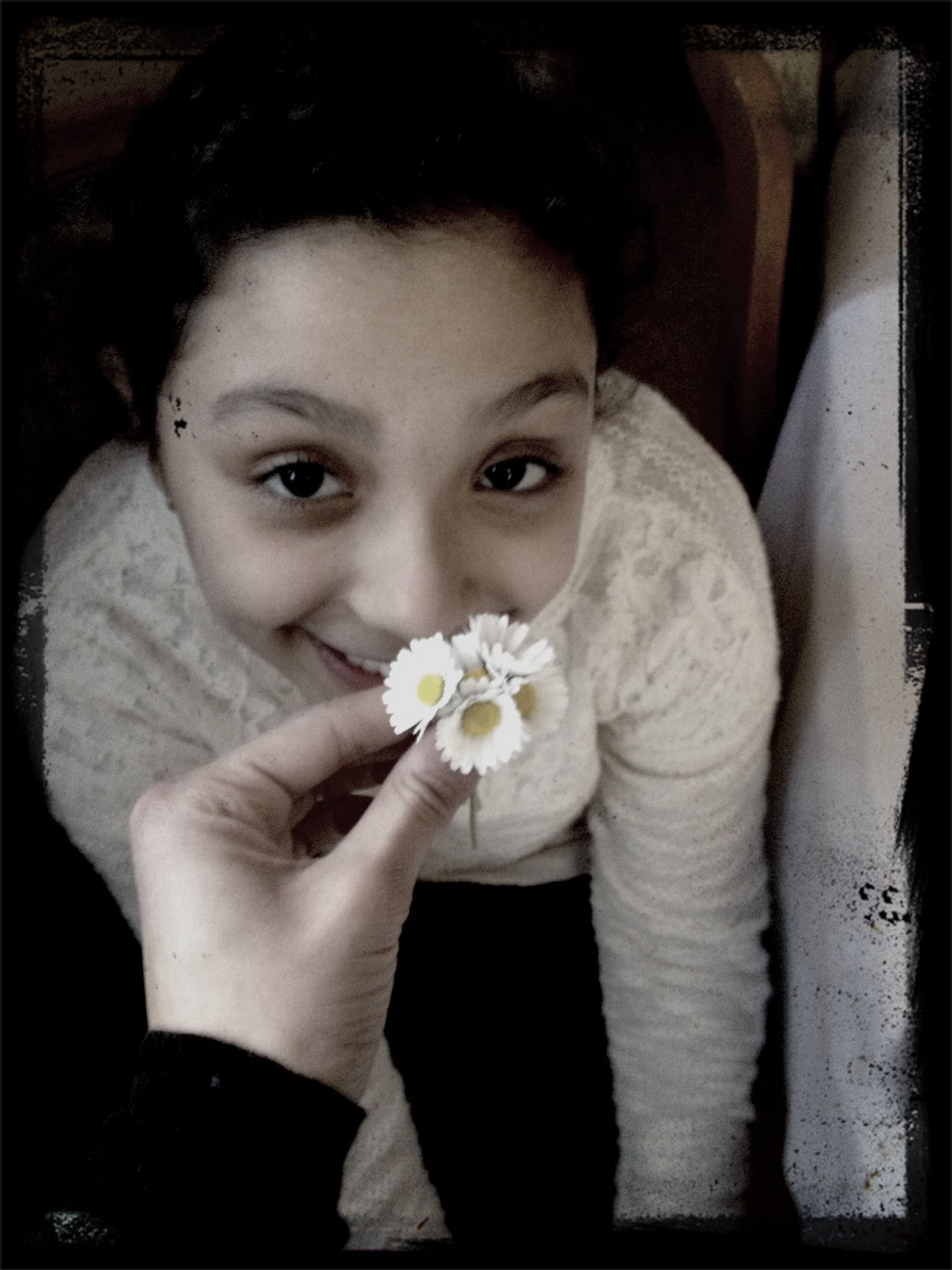 flower, holding, lifestyles, indoors, person, transfer print, leisure activity, close-up, casual clothing, fragility, auto post production filter, freshness, front view, high angle view, white color, flower head