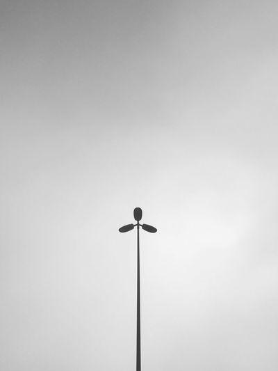 - Trebol. Low Angle View Lighting Equipment Outdoors Fog EyeEm Best Shots - Black + White EyeEm Best Shots - The Streets Urban Trebol