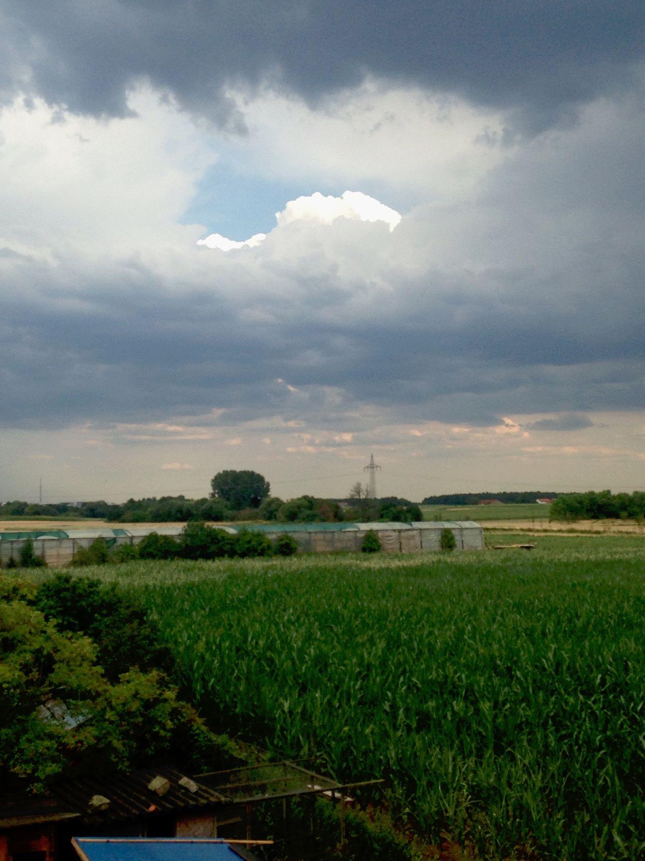 Sun peaking through Bavaria Erlangen Nature On Your Doorstep