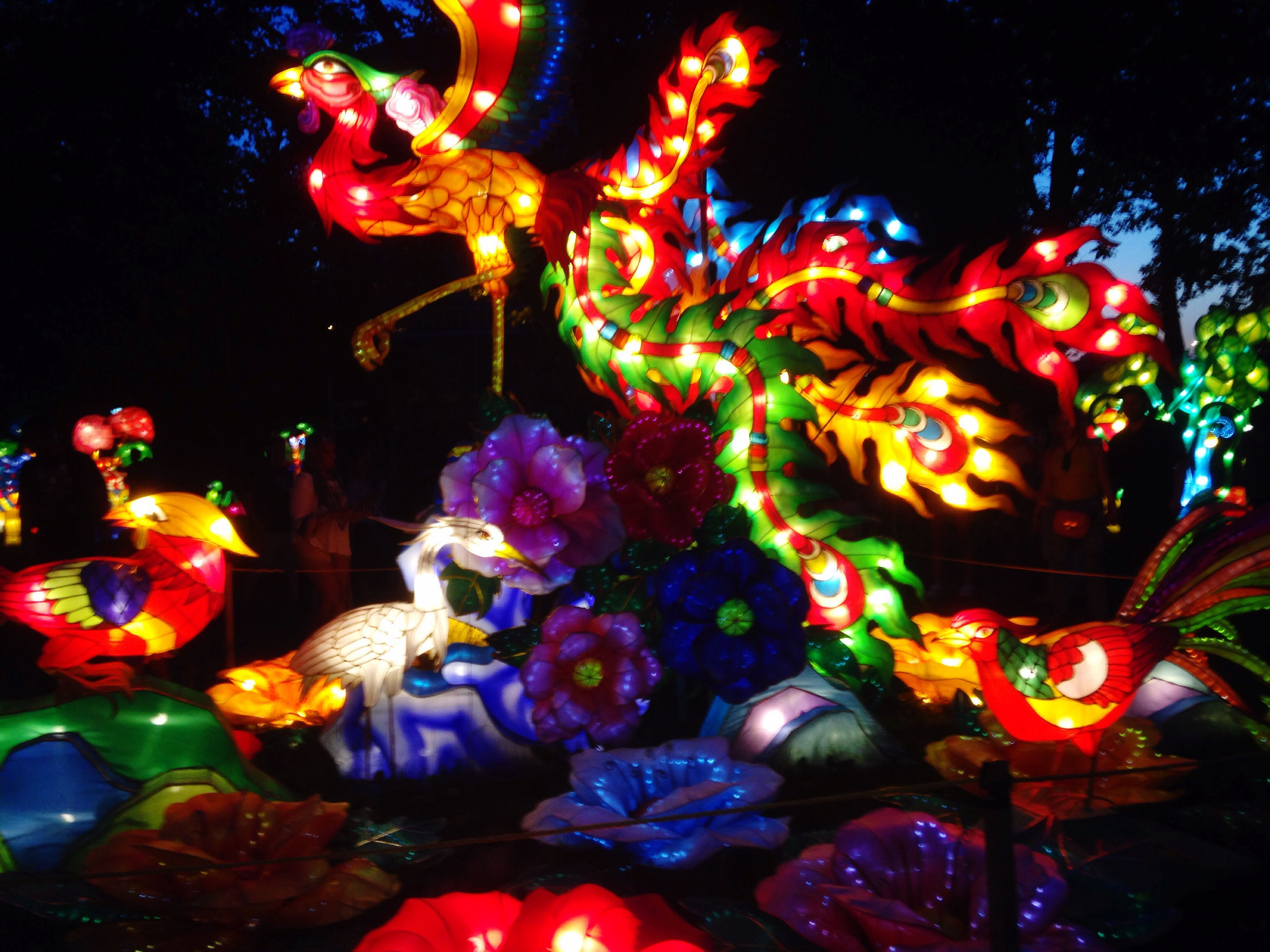night, celebration, multi colored, illuminated, tradition, cultures, traditional festival, no people, low angle view, outdoors, christmas decoration, chinese dragon, dragon, close-up