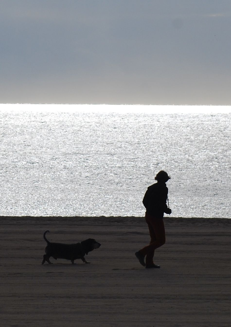 Sunset Silhouettes Her & Dog On The Beach