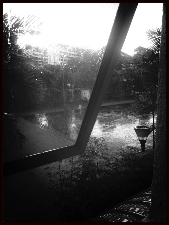 RΔIΠΠIΠG.... Eye4reflections Blackandwhite Photography Rainny Day Nature_collections
