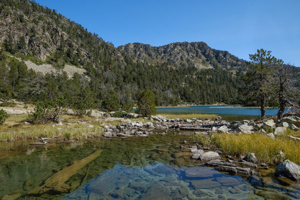 Les Laquettes lake in the Neouvielle natural reserve, France France Pyrenees Beauty In Nature Clear Sky Day Lake Landscape Mountain Mountain Range Nature Neouvielle No People Occitanie Outdoors Reflection Rock - Object Scenics Sky Tranquil Scene Tranquility Tree Water