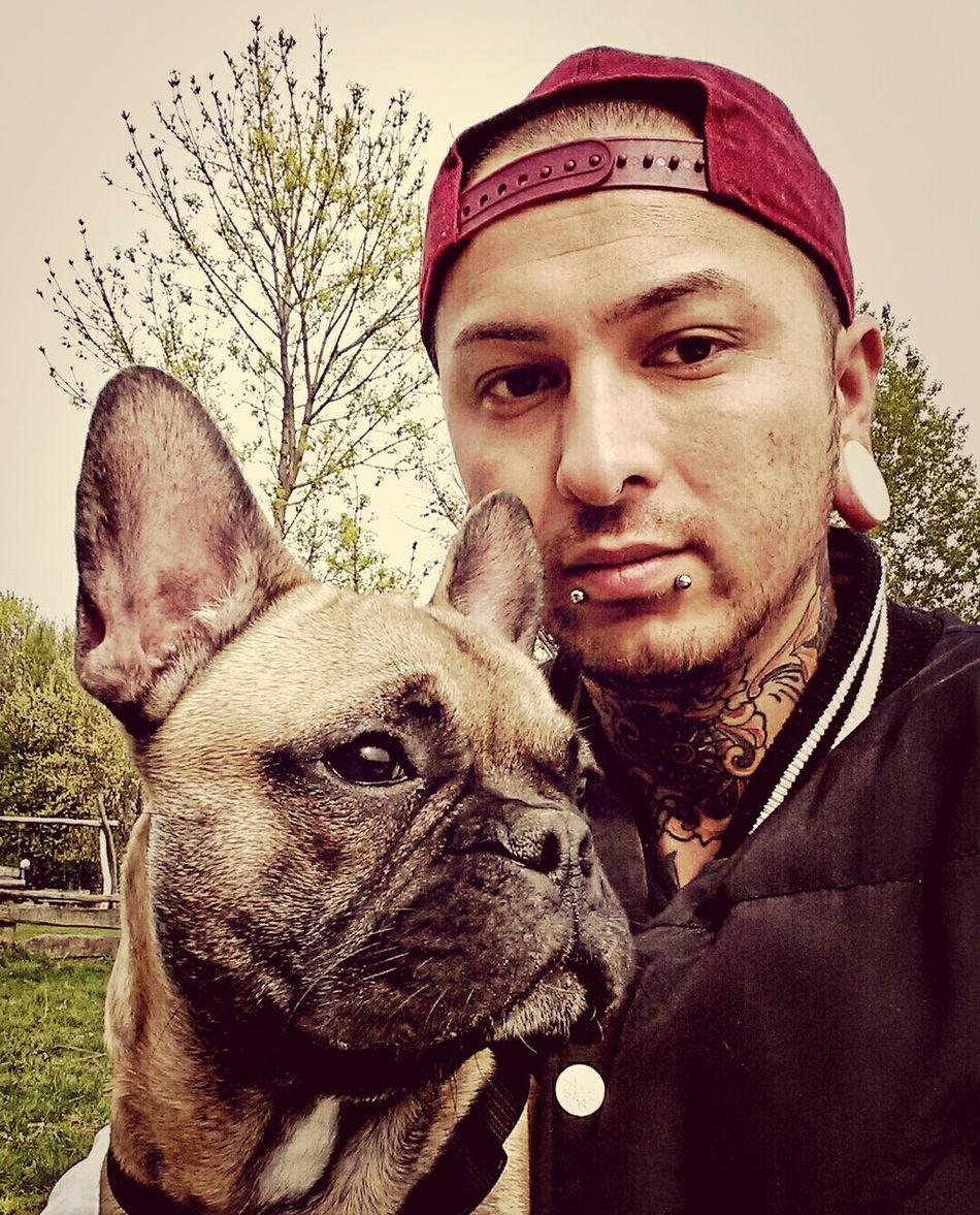 Esseesse Tattoo Frenchbully Frenchbulldog