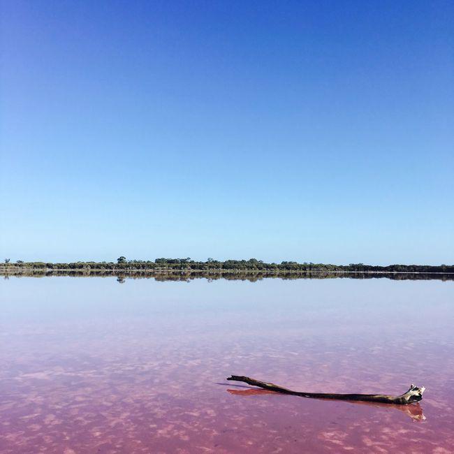 Australia Pinklake Pink Lake Horsham