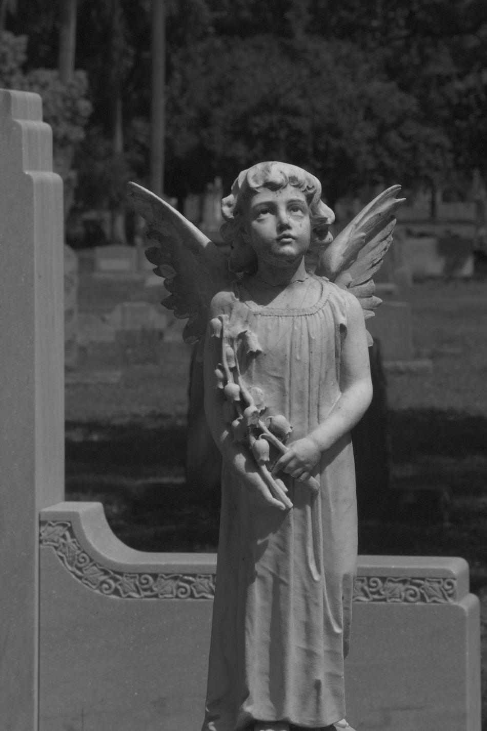 Beautiful stock photos of angel, Angel, Art And Craft, Cemetery, Creativity