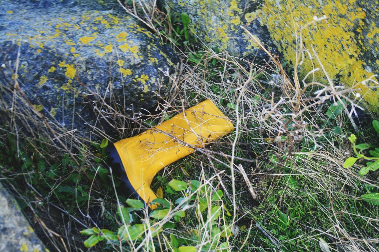 Yellow Outdoors No People Lost Boot