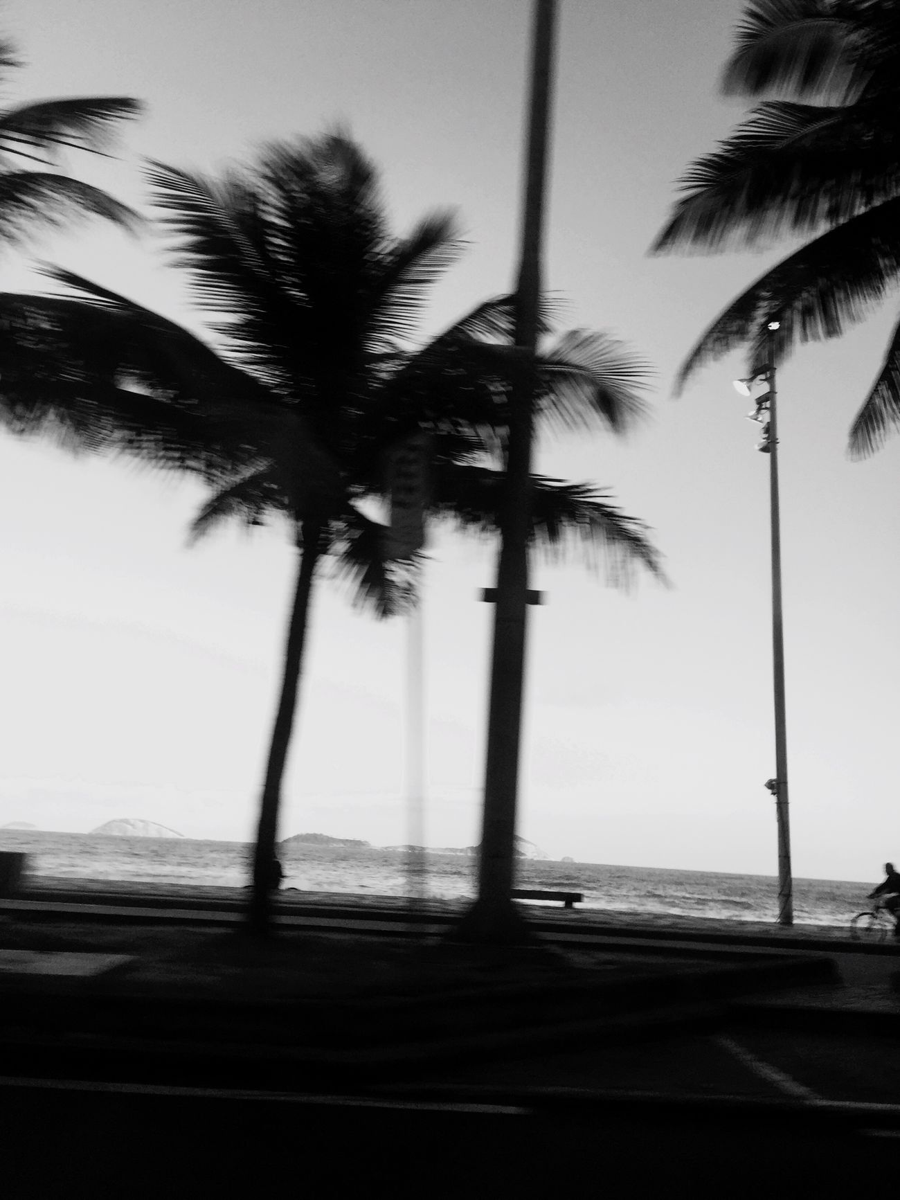 The Street Photographer - 2017 EyeEm Awards Palm Tree Outdoors Beach Beauty In Nature Hipstamatic Horizon Over Water IPhoneography Blackandwhite Photography Blackandwhite Black And White The Lonely Person In A Connected World