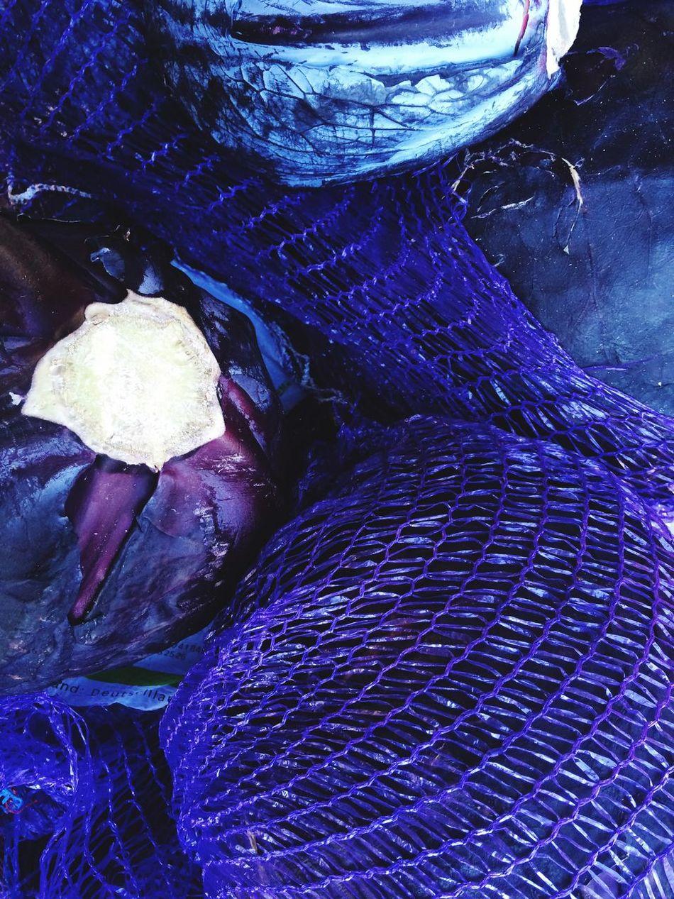 Blue Purple Cavolfiore Califlower Blumenkohl Vitamins Antioxidants Anticancer Healthy Eating Healthy Food