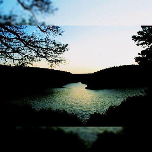 Summertime Summer Days Blue Sea Green Gergous Sinope Turkey Trees Picoftheday EyeEm Nature Lover