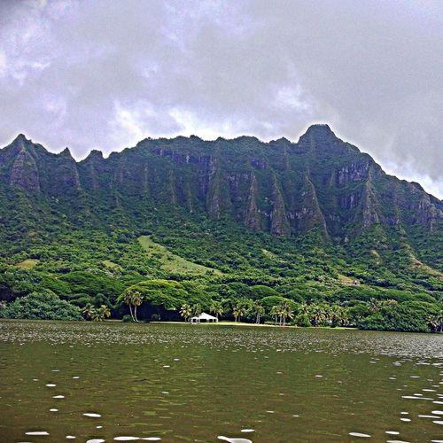 God's Artwork... 808 STATE Hawaii HiLife