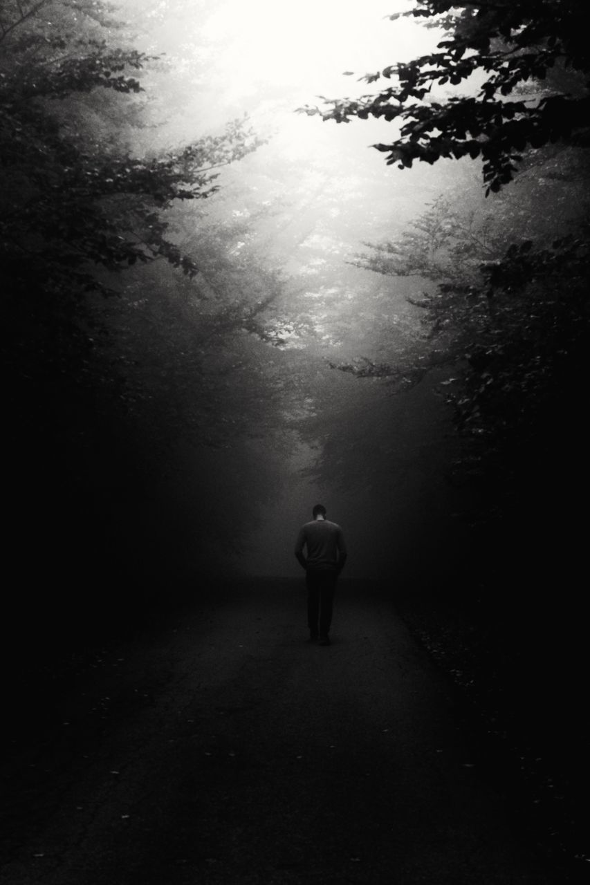 rear view, full length, walking, the way forward, one person, tree, nature, silhouette, men, road, landscape, outdoors, real people, day, beauty in nature, one man only, people