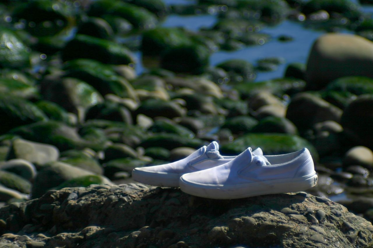 Left Alone A pair of white shoes left alone on the beach. Abandoned Beach Brown Clothing Coast Coastline Fashion Footwear Forgotten Lost Pair Sea Shoe Shoes Shore Shoreline Sport Together Two Water White