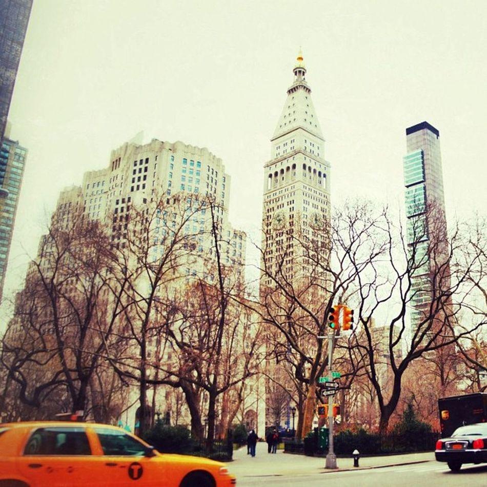 Bakerypark Picture By  Me Newyork Manhattan USA Me Honeymoon